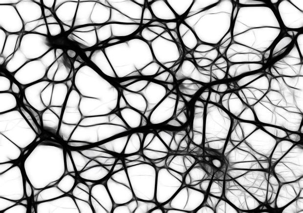neurons-440660_960_720.jpg